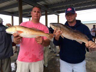 Louisiana redfish - Emerald Coast Redfish Circuit